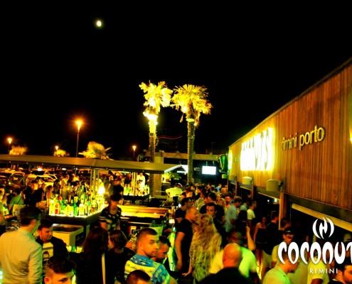 CoconutsCoconuts (103)
